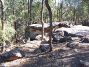 rocky                                                           outcrop Toohey                                                           Forest
