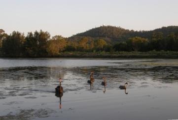 Eagleby                       Wetlands